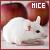 I like mice