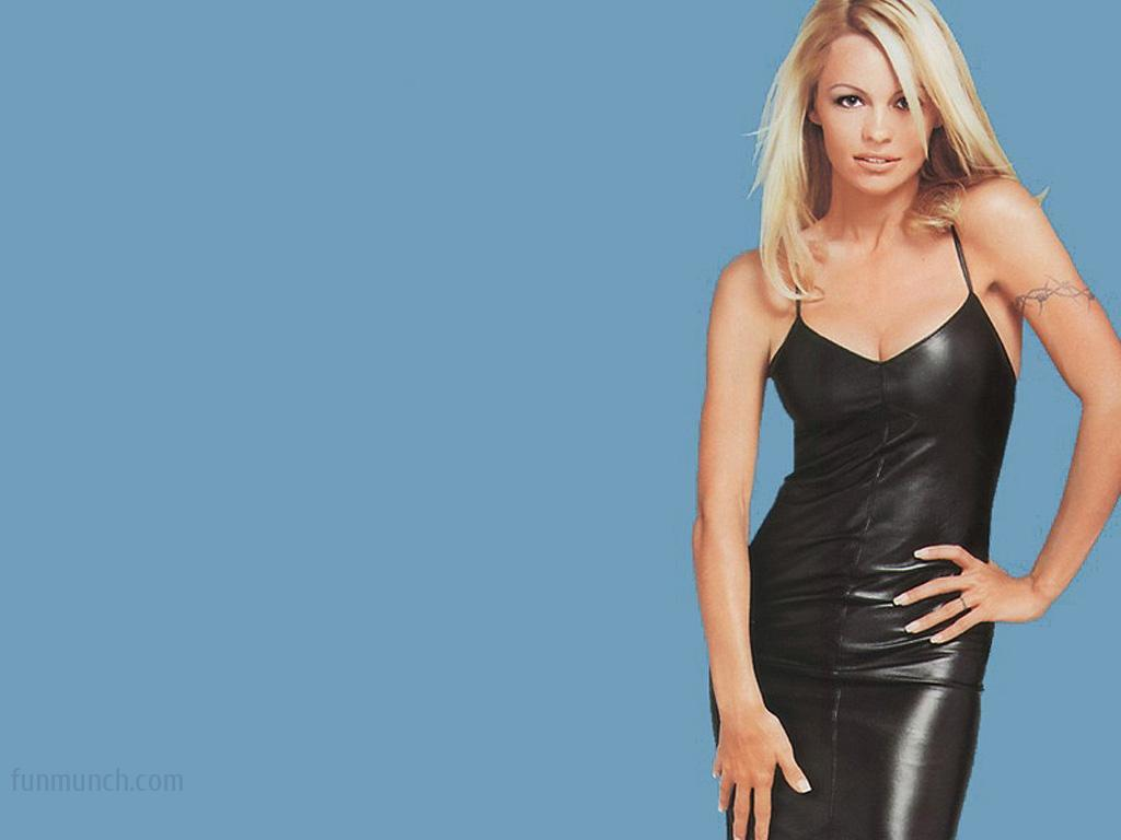 Pamela Anderson New Hd Wallpapers 2013 | subtat
