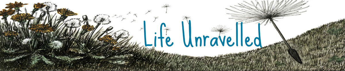 Life Unravelled