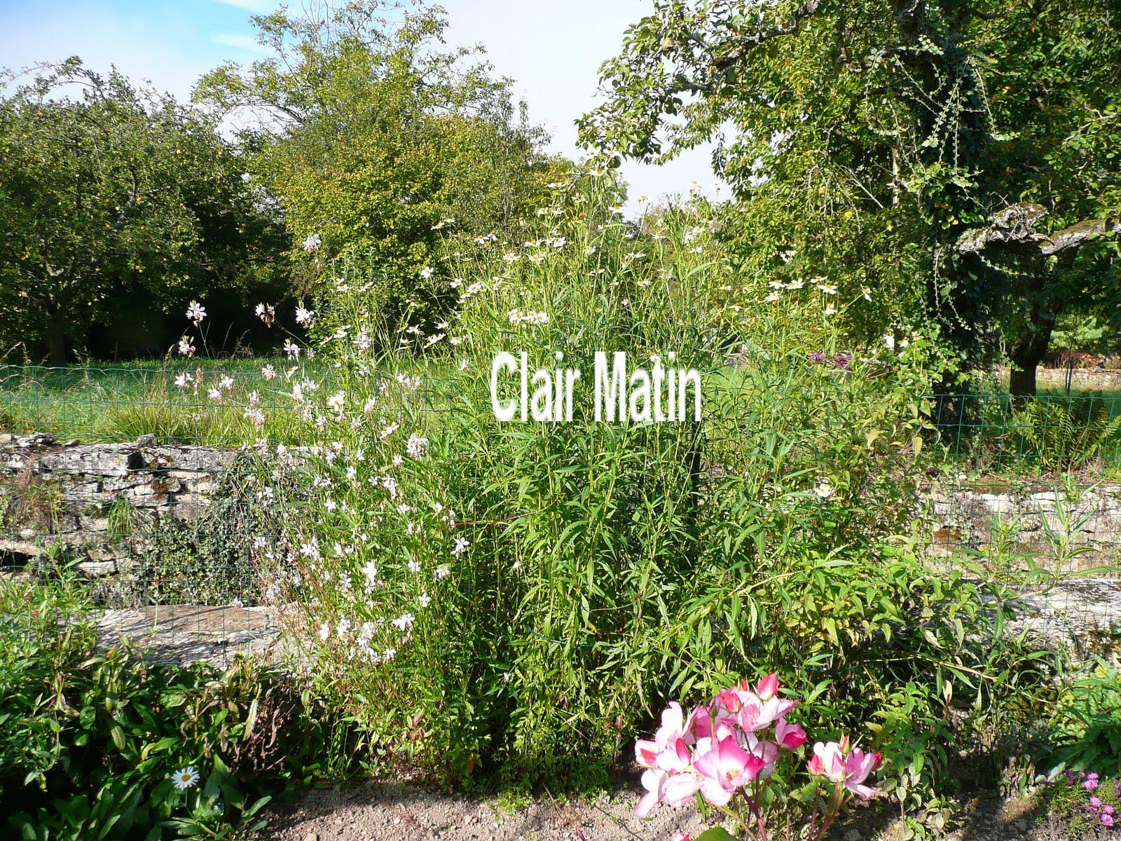 Notre jardin secret commande rosiers for M jardins miniac morvan