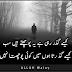 Kesii Guzar Rhi ya Puchty Hen Sab - Urdu Poetry images, Waraan Logg Pics