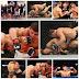 O senadorsaense Caio Magalhães conhecido no UFC como Caio Hellboy/Mostro vence luta contra o canadense Nick Ring. Veja vídeo!