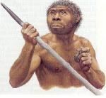 el homo erectus
