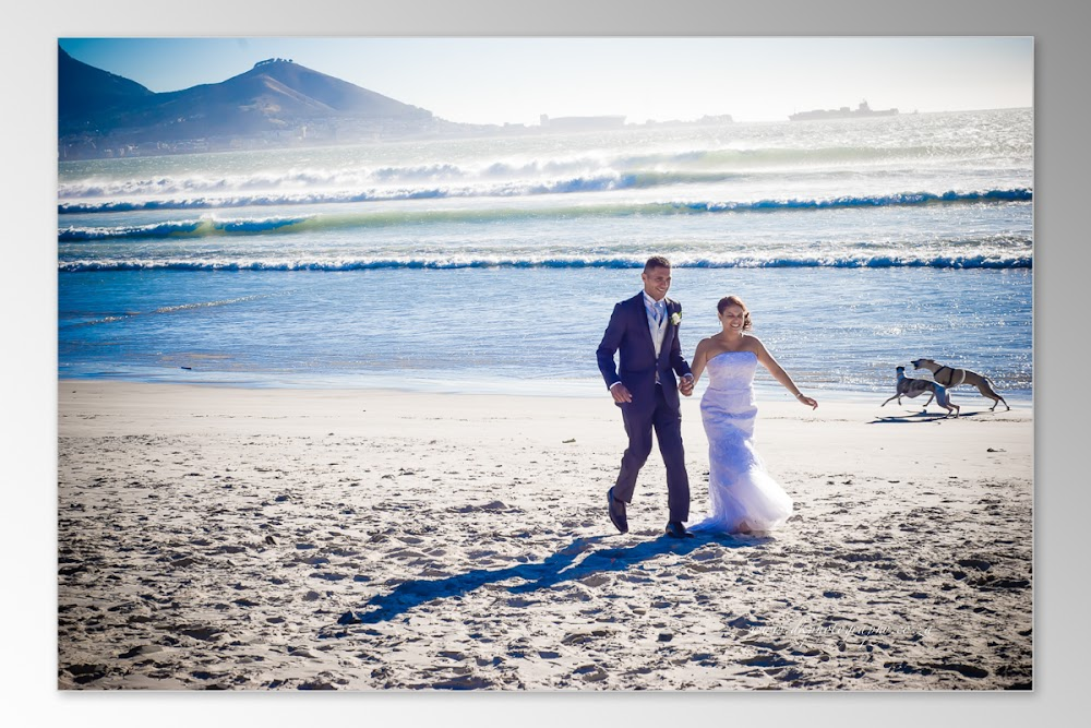 DK Photography Slideshow+DVD-244 Tania & Grant's Wedding in Waterfront | Atlantic Imbizo  Cape Town Wedding photographer