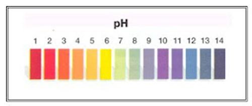 Ph Do Cabelo Tabela