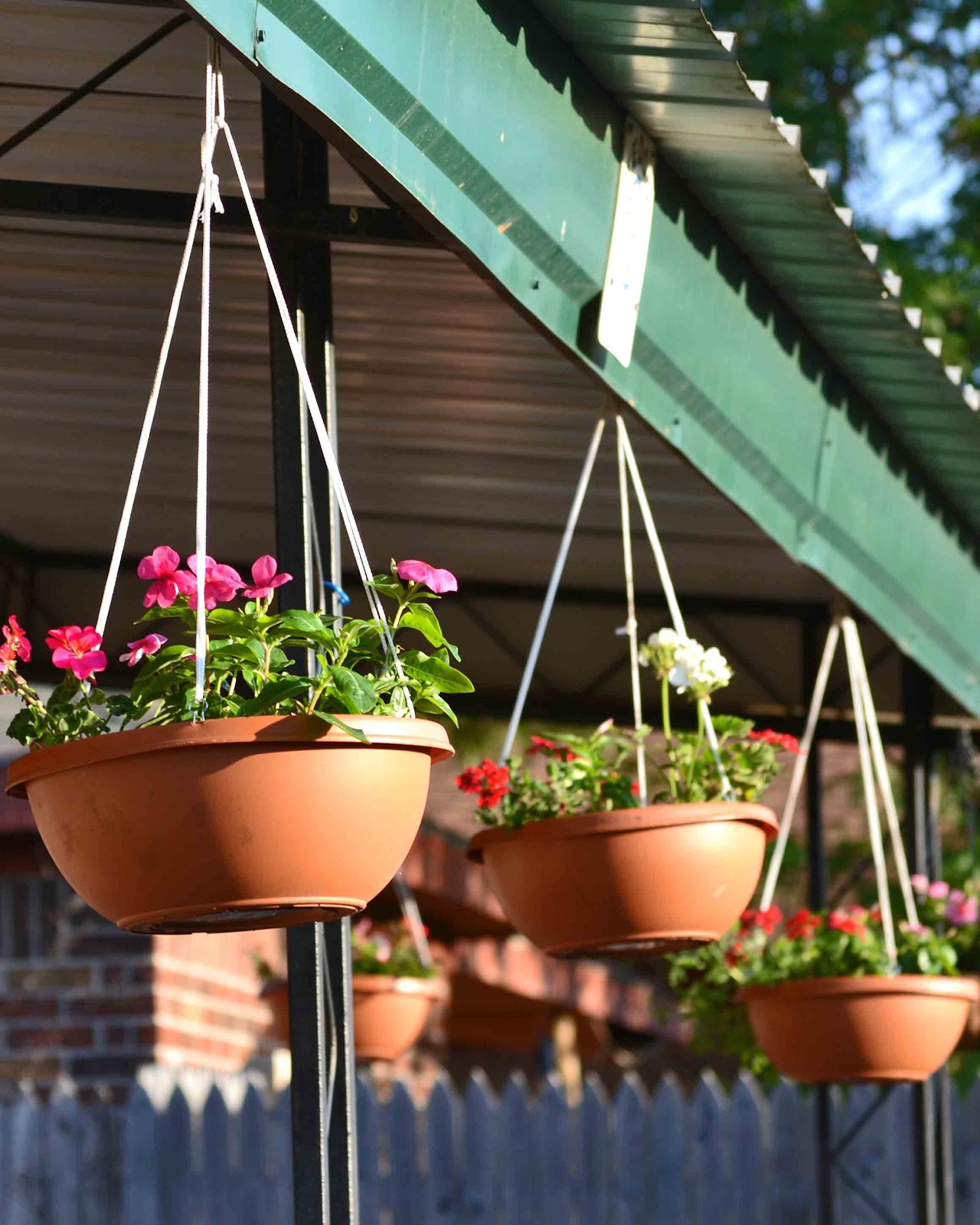 Babblings and More Easy Hanging Flower Pots