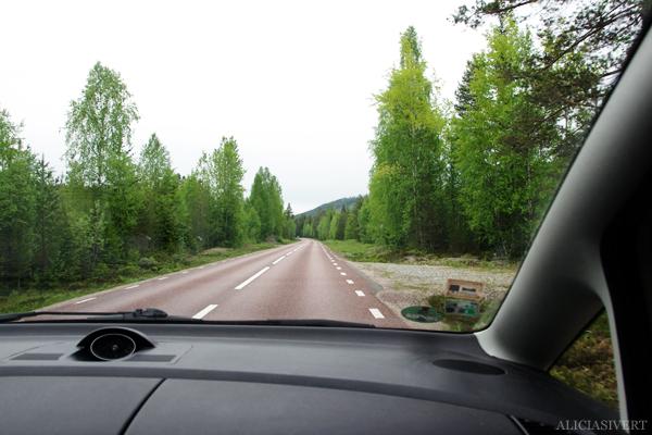 aliciasivert, alicia sivertsson, alicia sivert, fjällvandring, vandra i fjäll, fjällen, vemdalen, vemdalsskalet, hike, hiking in sweden, härjedalen, norrland, sverige,