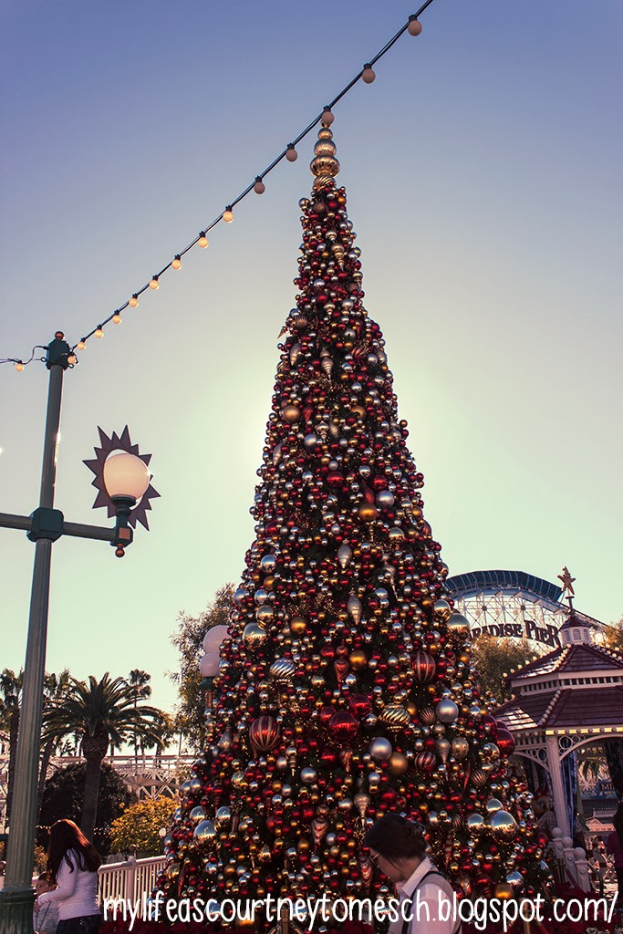 Disneyland California Adventures California Christmas