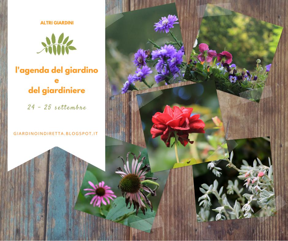 l'agenda del giardino e del giardiniere