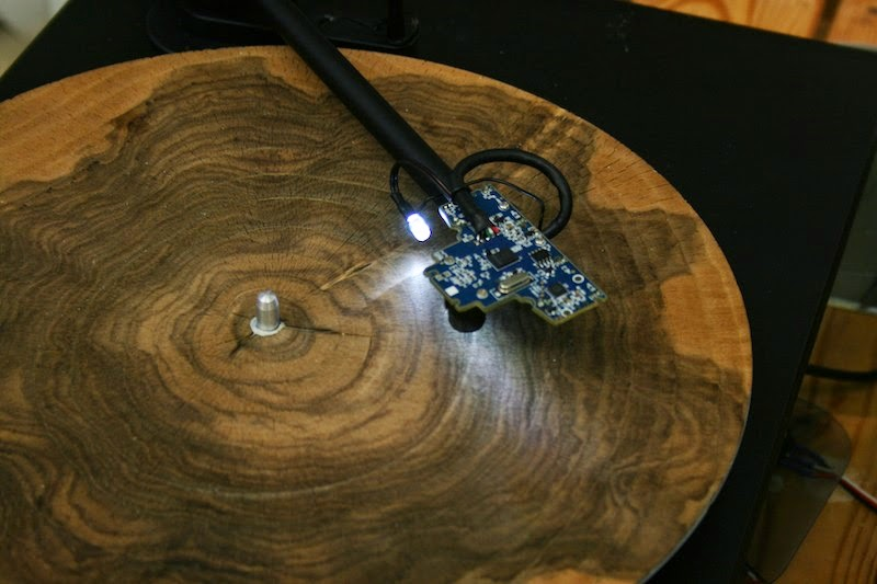 Slices of Tree Trunk Played on a Record Player
