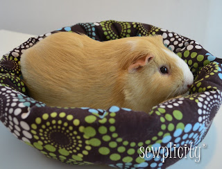 Simple pet bed link to tutorial home sweet home for Guinea pig bed pattern
