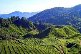Sumber Daya Alam Kawasan Asia Tenggara