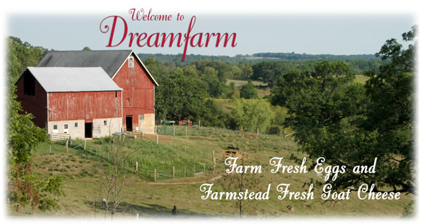 Dreamfarm News