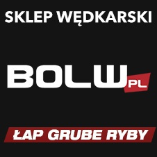 BOLW.PL