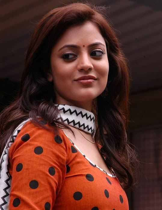 nisha agarwal from solo movie nisha agarwal photo gallery