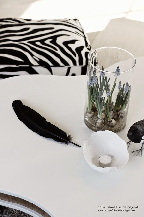 diy påskpynt, påsk, påsken, påskens, göra själv, inredning, tillverka, pyssel, pyssla, påsk 2015, zebrakudde, zebra, skata, vitt soffbord, soffbord i form av treklöver, furniturebox, vårlök, vårlökar, lök, lökar, inredningsblogg, blogg, bloggar, bloggare,