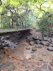 "Unused small bridge across a ""Monsoon Stream""."
