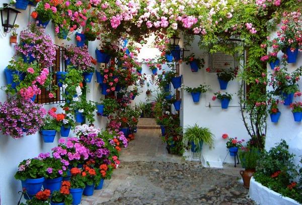 Jardines comunitarios patios de c rdoba m s que fiesta y - Jardines cordoba ...