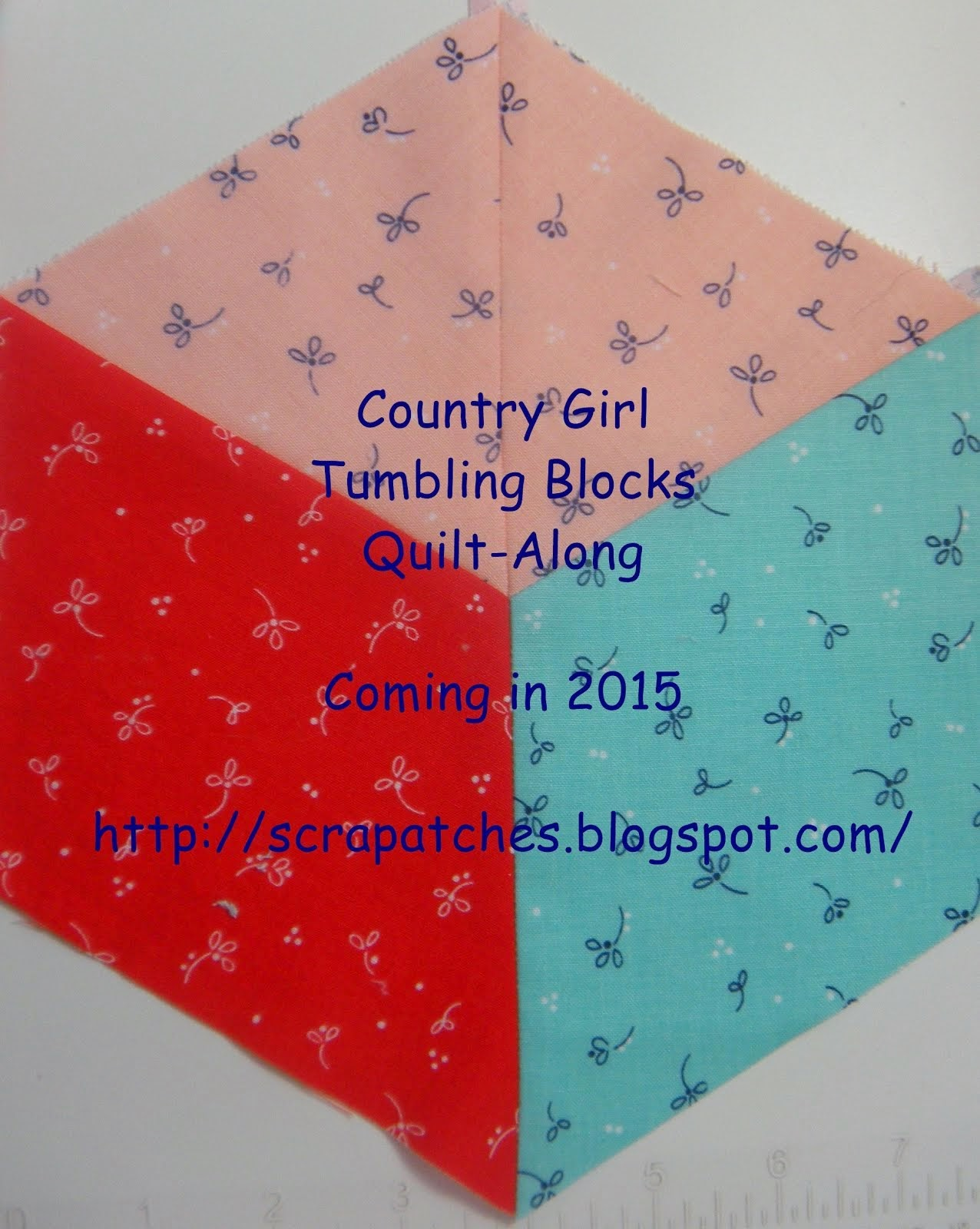 County Girl Tumbling Blocks QAL