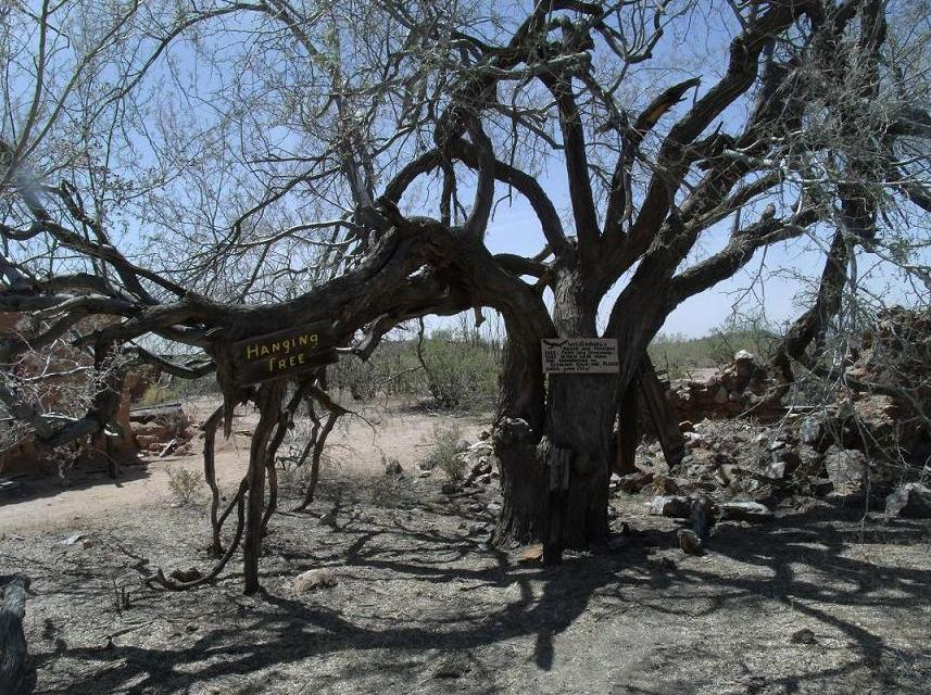 "It is known that eighteen ""claim robbers"" were hung on what Vulture City residents called ""The Hanging Tree"" which still stands."