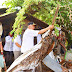 Warga Kelurahan Pisang Kooperatif, Berjanji Bongkar Bangunan Sendiri