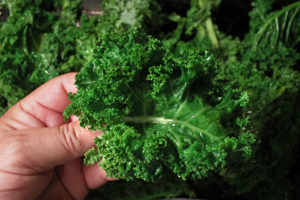 Kale And Spinach Drink Recipes