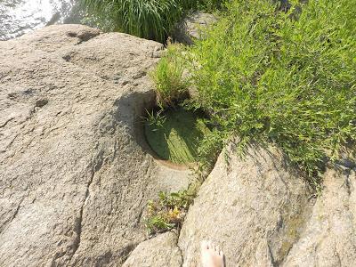 заросший зеленью колодец на верхушке скалы