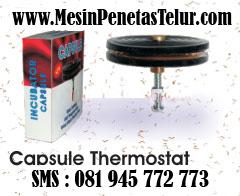 Capsule Thermostat : Capsule