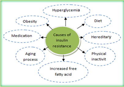 diabetes mellitus causes and effect You want something special about diabetes diabetes mellitus causes and effects,what you are looking  its real effect would be giving people in.