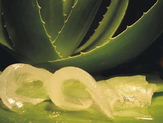 Remedios caseros para las estrias