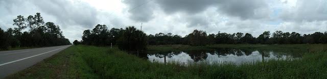 Arcén para la bicicleta, lagunas y bosques alrededor de la SR 31