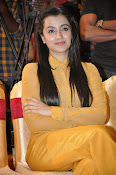 Trisha photos at Cheekati Rajyam event-thumbnail-3