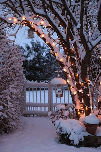 Tornando seu Natal, mais lindo.