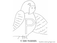 Alphabet Coloring Pages P FOR PARROT