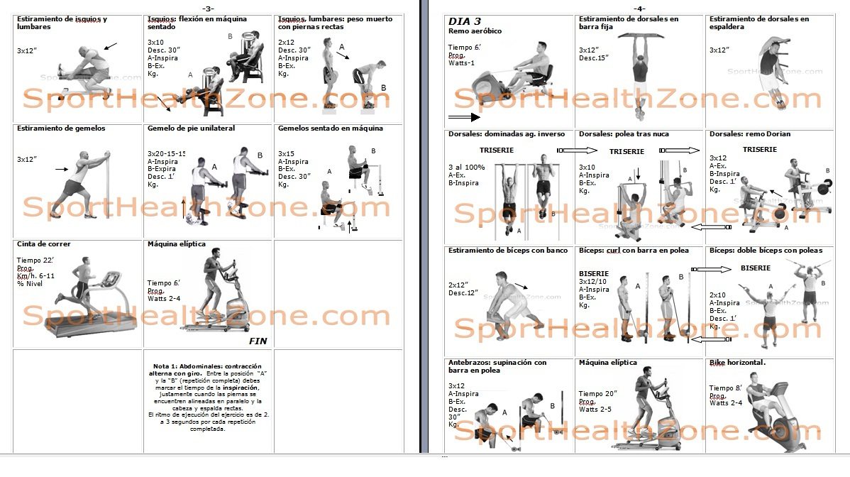 Rutinas rutinas de ejercicios para gimnasio con pesas for Rutinas gimnasio