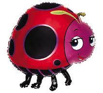 Ladybug Lin