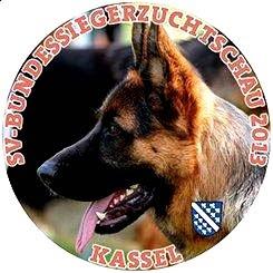 Sieger Alemán 2013 - Resultados