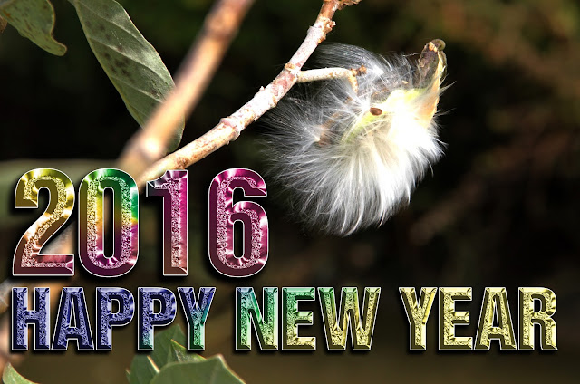 new year hd calendar 2016
