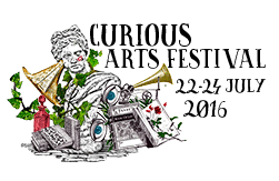 Curious Arts Festival Blogger