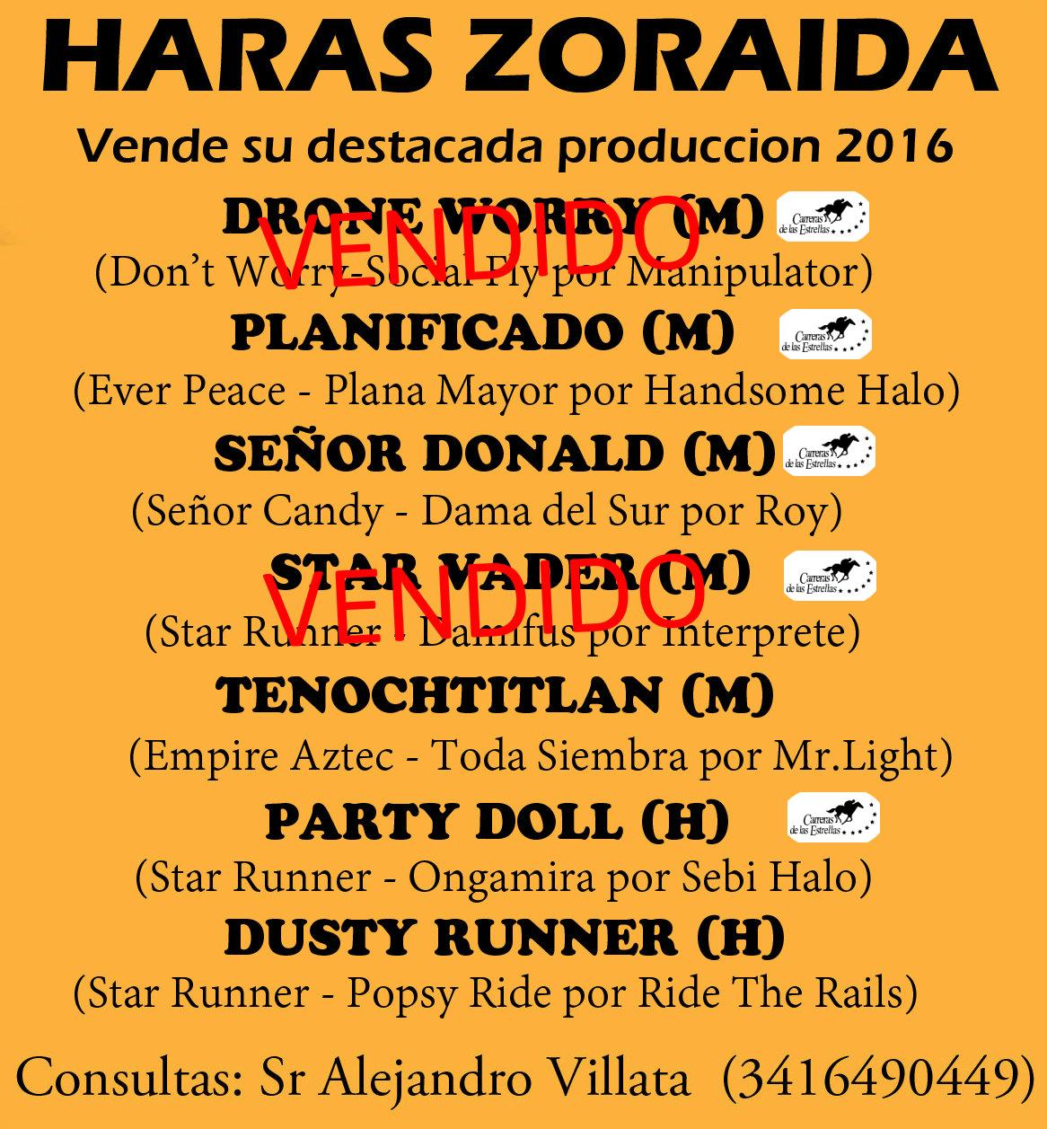 HS ZORAIDA PROD 2016 1