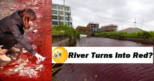 River In China Mysteriously Turns Bloody Red