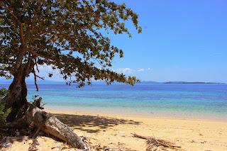 Save Bangka island