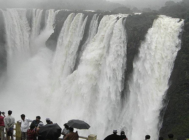 Overflowing Jog Falls - Karnataka