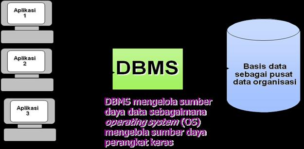 evolution of dbms essay