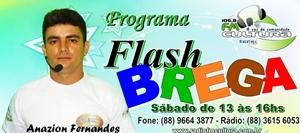PROGRA FLASH BREGA