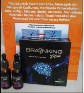 brainking plus