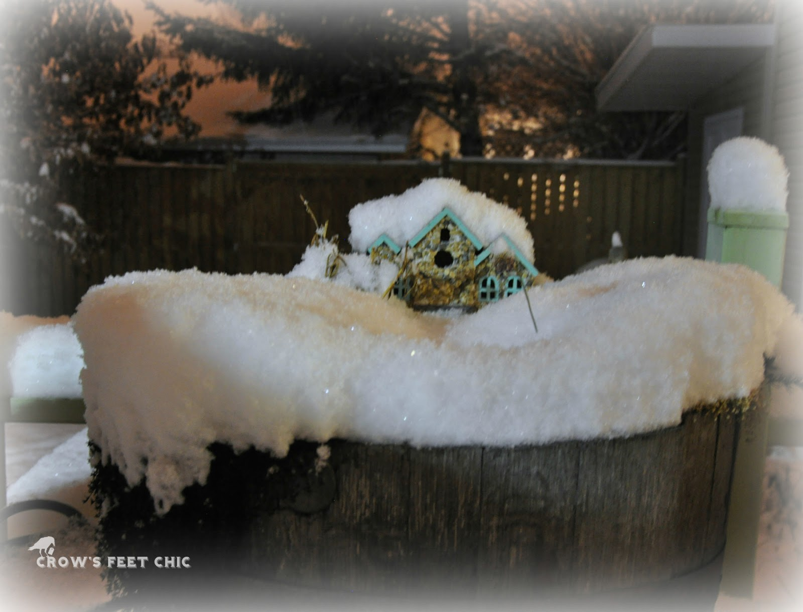 fairy garden in the snow crow u0027s feet chic
