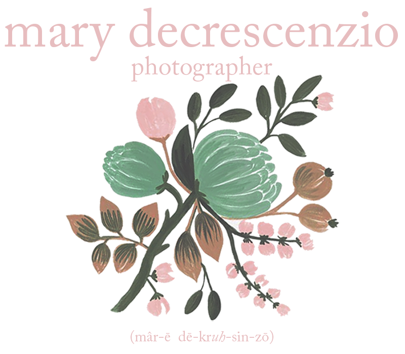 mary decrescenzio - photographer