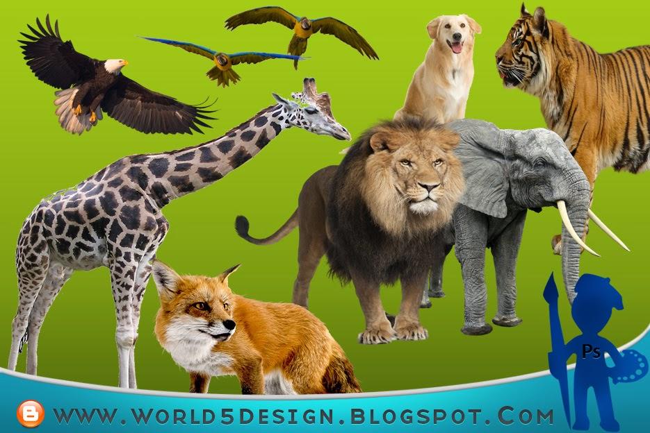 مجموعة رندرات للحيوانات بصيغة PNG