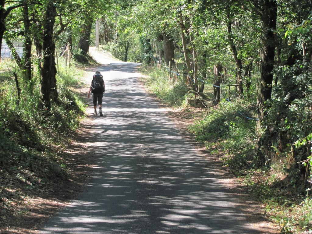 Walking Tours France Shady